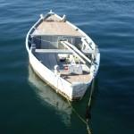Rovinj---boats-2_edited-1