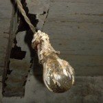 Light bulb covered in ....