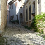Street with cobblestones in Tinjan, Istria