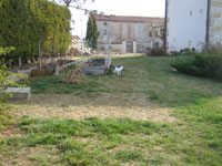 Lawn, brown from lack of winter rain in Istria