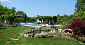 What my garden used to look like, in Istria