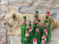 Siska bravely guarding her beer bottle collection in Kovaci, Istria
