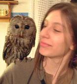 Agatha the owl & friend, Istria