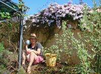 Gardening in Istria