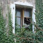 Broken window on back of house